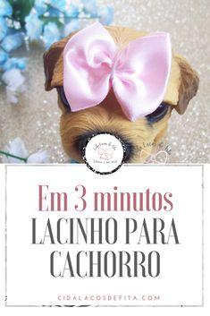 O lacinho para cachorro mais fácil do mundo!!  Vem conhecer o Blog Cida Laços de Fita #artesanato #laçospet  #pet  #lacosdefita #laçosdecetim  #façavocêmesmo