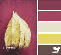 autumn fruit tones
