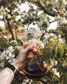 602 отметок «Нравится», 6 комментариев — Andrey (@klevtsov_andrey) в Instagram: «Вот это я понимаю #chemexlove ❤️ В нем была прекрасная панама, которую выпили по пути ☕️»