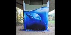 graffiti shark tank - Google Search