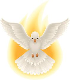 Vector art of Holy Spirit symbolized by a dove. Dove and flame are on separate layers. Holly Spirit, Day Of Pentecost, Première Communion, Angel Images, Bible Illustrations, Communion Invitations, Catholic Kids, Jesus Pictures, White Doves
