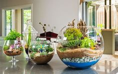 30 ideas para decorar con cactus y terrarios  Decoracion