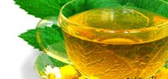 The advantages of Green Tea for Hair Fall