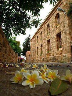 Biblos lebanon