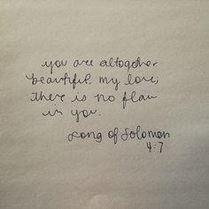 song of solomon 4:7