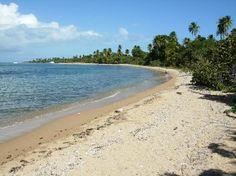 Green Beach - Isla de Vieques