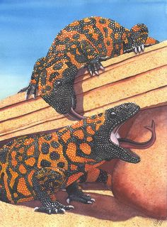 Gila Monster Print featuring the painting Sneak Attack by Catherine G McElroy