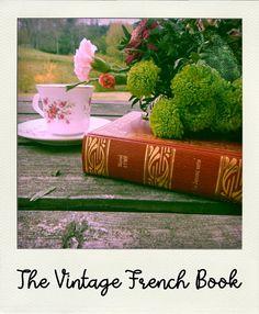 VINTAGE : M. Aymé - La Jument verte - Livre ancien en français