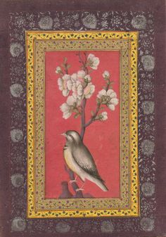 Nightingale on red background from the Qajar Album. Persia 1800-1850.