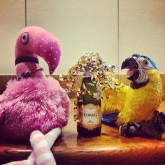 Patsy & Paulie celebrate the New Year right in Punta Gorda, Florida