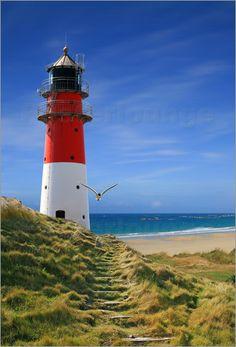 Poster Leuchtturm am Deich, Topseller bei Posterlounge. Als Leinwanddruck, Poster, auf Alu-Dibond, oder Forex bestellbar.