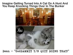 """""""Imagine Getting Turned Into A Cat On A Hunt And You Keep Knocking Things Over In The Bunker"""" by alyssaclair-winchester ❤ liked on Polyvore featuring imagine, supernatural, samwinchester and DeanWinchester"""