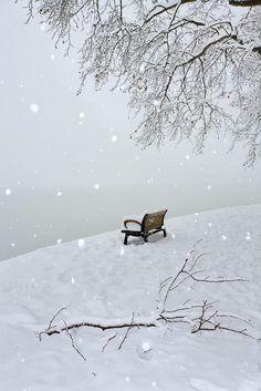 Garden Bench in the Snow