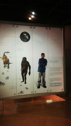 Cradle of Humankind World Heritage Sites, South Africa