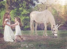 Unique Vision Photography - Charlotte, NC  Unicorn Children Photography www.uniquevisionphotography.com Charlotte Nc, Unique Photo, My Photos, Unicorn, Horses, Photography, Animals, Photograph, Animales