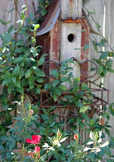 birdhouse covered with vines and flowers...spring is here~~~~~jeje