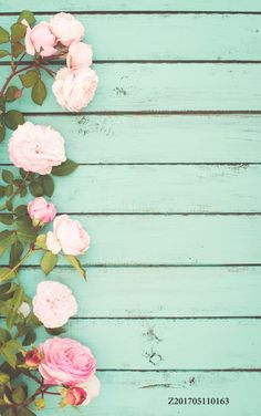 LIFE MAGIC BOX Wrinkle-free Washable Rose Tablecloth Rose Background Wooden Photography Backdrops Wedding Backdrops Photography Backgrounds…TR Wood Wall Photograph Backgrounds Wood Floor…Do You believe in Magic* – Marina – Tumblr Wallpaper, Pink Wallpaper, Screen Wallpaper, Flower Background Wallpaper, Rose Background, Background Pictures, Backdrop Background, Wooden Background, Invitation Background