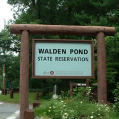 THE Walden Pond where Henry David Thoreau lived just outside Concord, Mass
