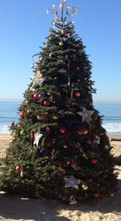 Christmas on the Beach, CA style!