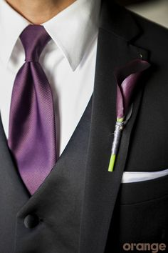 Groom suit with purple tie