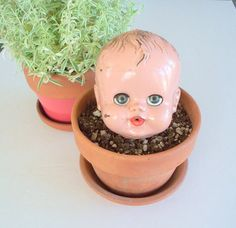 potted baby head - the butter dish etsy  COURTNEY! lol