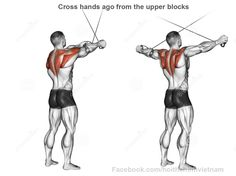 Cross hands ago from the upper blocks. Cross hands ago from the upper blocks. Exercising for bodybuilding. Target muscles are marked in red. Cable Machine Workout, Cable Workout, Gym Workout Tips, Ace Fitness, Physical Fitness, Bodybuilding, Workout Bauch, Estilo Fitness, Workout Posters