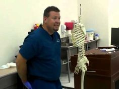 Dr. Preddy Lower Limbs Part 1 - YouTube, Explains the lower limbs