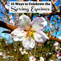 15 Ways to celebrate the spring equinox