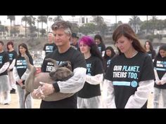 ▶ Wise Up - The National Animal Rights Day - YouTube