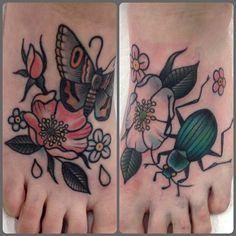 Cassandra Frances / beetles, bugs, and butterflies