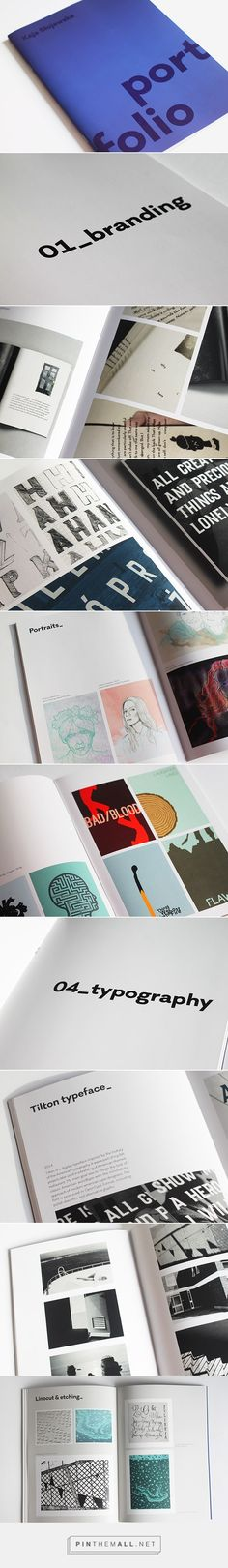 Portfolio 2014 on Behance - created via http://pinthemall.net