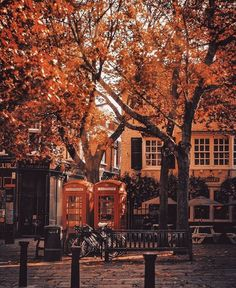 Travel English, British Travel, Fall Images, Fall Pictures, Richmond Green, Richmond Upon Thames, Autumn Cozy, Autumn Fall, Bonfire Night