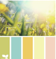 Liking this blue and light yellow, by design-seeds.com