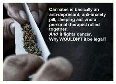 Good question Legalize It, Regulate It, Tax It! http://www.stonernation.com Follow Us on Twitter @StonerNationCom