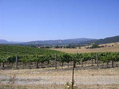 #NapaValley #Wine