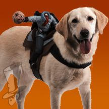 Headless Horseman Dog Rider Costume