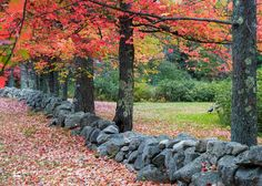 Stone Walls | 70 articles and images curated on Pinterest | stone wall, new  england homes, saltbox houses