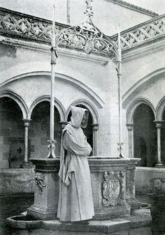 Cartuja de Santa Maria de Montalegre