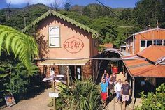 Driving Creek Railway and Potteries - Coromandel New Zealand North, Entrepreneur Inspiration, Entrance, Parents, Island, Activities, Holidays, Country, House Styles