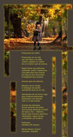 Sarau das Rosas - para período de 24/09 a 14/10 - Fórum - Casa dos Poetas e das Poesias