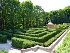 5216 Best Topiary Pruning Training Images On Pinterest Formal Gardens Gardens And Landscaping