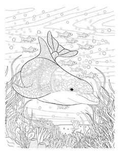 Adult coloring book Twenty creative and stress-relieving coloring pages for adults inspired from the amazing underwater world of the oceans and the rivers. Book available in Amazon.com https://www.amazon.com/Oceana-Wonders-Jorge-Van-Perre-ebook/dp/B01F2NHYLM?ie=UTF8&keywords=oceana%20adult%20coloring%20book&qid=1464901521&ref_=sr_1_1&s=books&sr=1-1