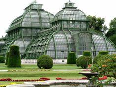 56090080-palmenhaus-schoenbrunn.jpg (800×600)