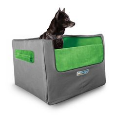 Kurgo Skybox Rear Dog Booster Seat for Cars with Seat Belt Tether, Grass Green/Charcoal >>> Find out more about the great product at the image link. (This is an affiliate link and I receive a commission for the sales)