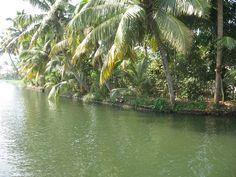 Kovakam tourist attraction, visit India with a managed tour organization Pakistan Travel, India Travel, Kerala Backwaters, Budget Holidays, Kerala Tourism, Visit India, Tourist Places, Canada Travel, Terra