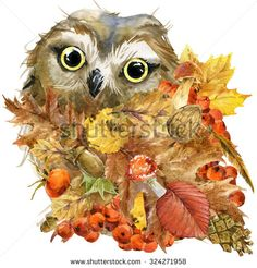 Forest bird owl Autumn nature colorful leaves background , fruit, berries, mushrooms, yellow leaves, rose hips on black background. watercolor illustration