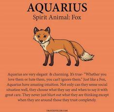 Aquarius Traits, Aquarius Love, Aquarius Quotes, Aquarius And Libra, Aquarius Woman, Capricorn And Aquarius, Zodiac Signs Horoscope, Zodiac Sign Traits, My Zodiac Sign