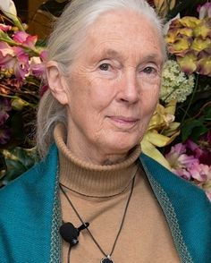Christine Moses  Chrisfeatherheart.com  http://ift.tt/2mV8ucK  Jane Goodall. She is a primatologist ethologist anthropologist and UN Messenger of Peace. At 82 years old she has never slowed down from her mission of being a good steward to the earth constantly advocating for animals the environment and conservation. She is a joy to watch listen to and learn from. #womeninphotography #wmnhist #womenshistory #womenshistorymonth #inspiration #photographer