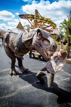 18 Best Lost Kingdom Images Dinosaur Theme Park Attraction Dinosaurs