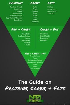 Are you counting macros? Here's a cheatsheet on proteins, carbs, and fats.
